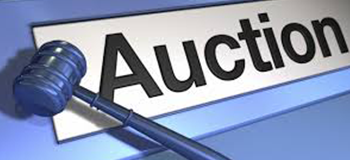 Database Creation for The Details from Auction Sites Through Links Provided by The Client
