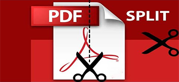 Processing of Document and Splitting of PDF Files for Online Billing Systems